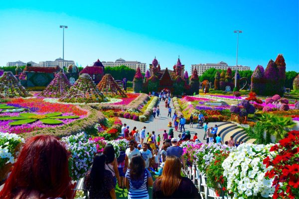 Du lịch Dubai -vườn hoa Miracle Garden