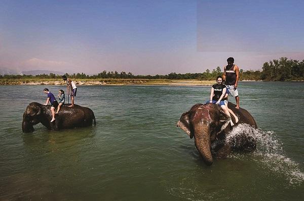 Khám phá Nepal - công viên Chitwan