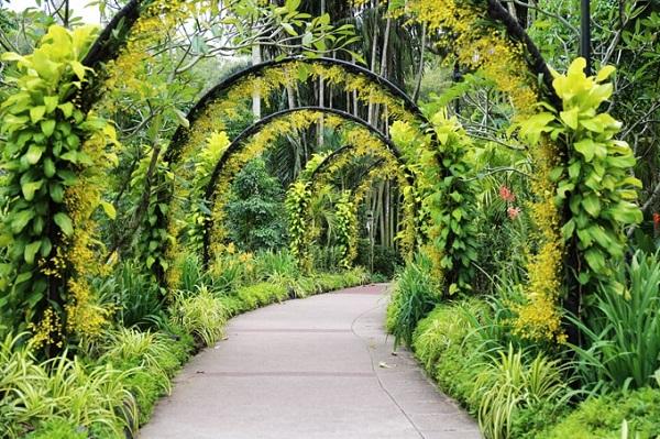 Vườn Lan Quốc gia Singapore