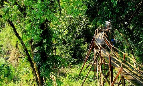 Vườn quốc gia Nam Cát Tiên - Đồng Nai