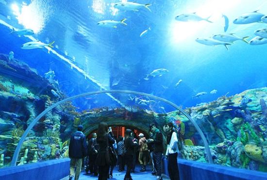 10 điểm du lịch tuyệt đối không thể bỏ qua khi đến Khánh Hòa-vienhaiduonghoc