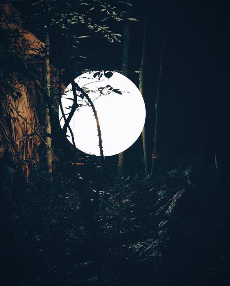 Những địa điểm bị bỏ hoang đẹp - Biệt thự bỏ hoang trong vườn quốc gia Ba Vì