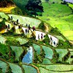 """Quên lối về với vùng """"cao nguyên tuyết"""" ở Việt Nam – Sa Pa (P1)"""