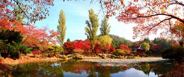 """Vẻ đẹp đầy quyến rũ của vọng lâu Bomun vào mùa thu đã """"hớp hồn"""" rất nhiều du khách"""