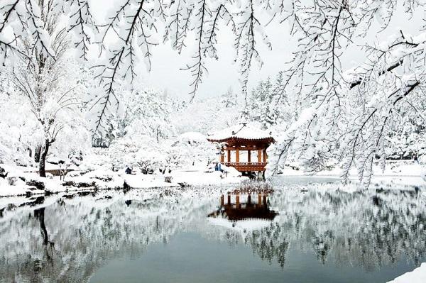 Mùa đông, nơi đây đẹp như tranh vẽ, mê hoặc khách du lịch Hàn Quốc