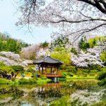 """Check """"nhẹ"""" 5 địa điểm du lịch Hàn Quốc hot nhất 2017-2018"""