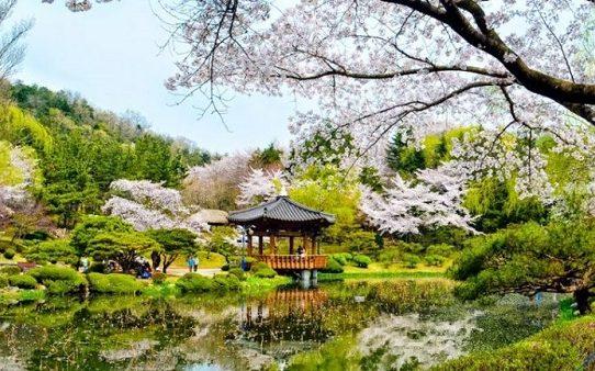 Top 5 địa điểm không thể bỏ qua khi du lịch Hàn Quốc