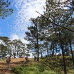 Chia sẻ kinh nghiệm Trekking Tà Năng – Phan Dũng