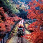 5 trải nghiệm nhất định phải thử khi du lịch Nhật Bản