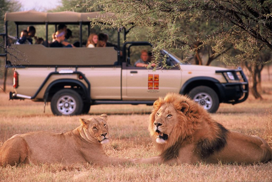 Pilanesberg Nam Phi