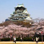 Ghé thăm lâu đài Himeji