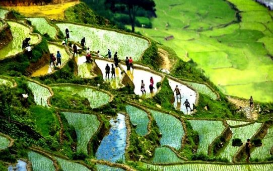 """quên lối về với vùng """"cao nguyên tuyết"""" ở Việt Nam - Sa Pa (phần 1)"""