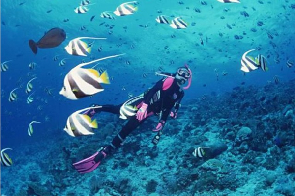 Du lịch tour lặn biển Nha Trang có gì?