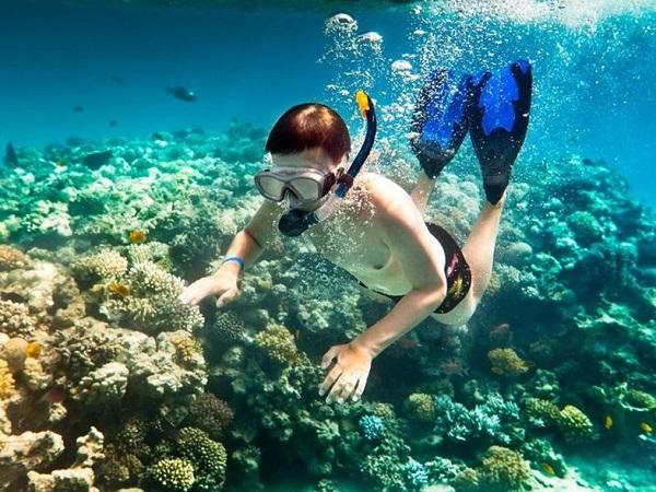 Lặn ngắm biển là hoạt động rất được ưa thích