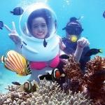Tour đi bộ dưới biển có gì thú vị? Liệu có nên thử?